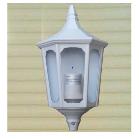Ecliarage extérieur aluminium et globe verre IP65 355x195mm 60W E27 couleur blanc